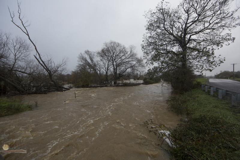 Back creek (Bulwer Street) in flood.