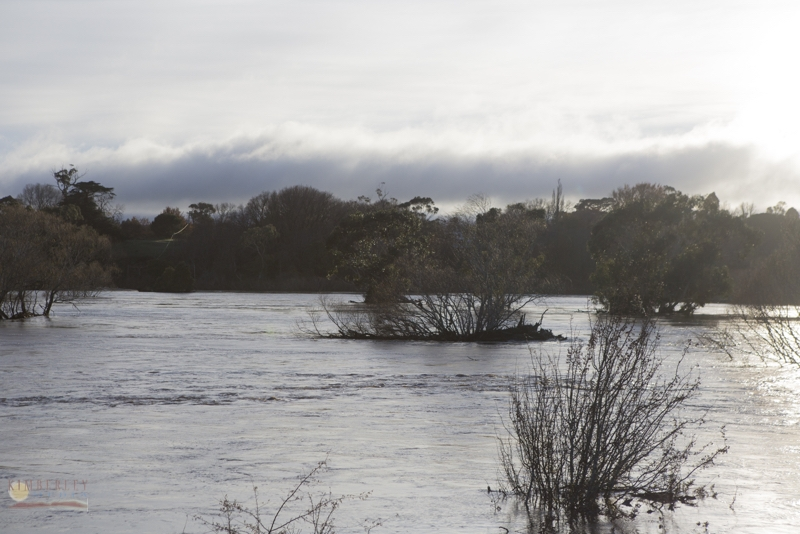Longford flood, 7 June, at 6.4m and rising.